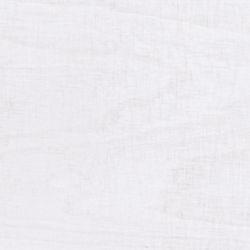 weiße Birke