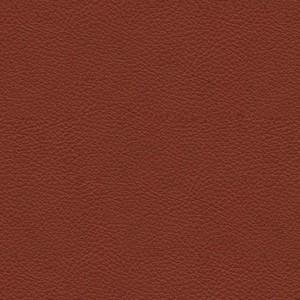 Soft leather_cognac