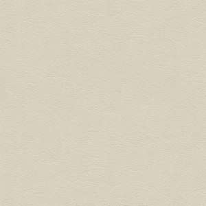 Cat. 5_ Pelle bianca