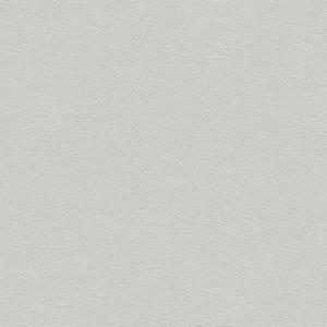 Cat. 5_ Pelle bianco ottico