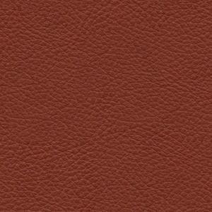 Cat. 4_ Classic leather_ Cognac