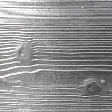 Cromo Fir-wood