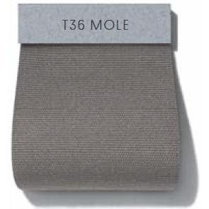 Dew_ Cat HD1_ T36 Mole