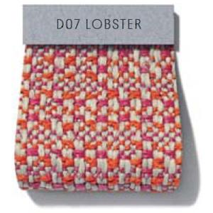 Plot_ Cat HD2_ D07 Lobster