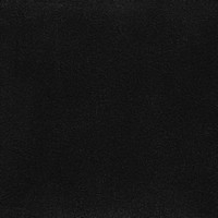 Daim_noir 6005