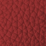 Leather_ Red P07