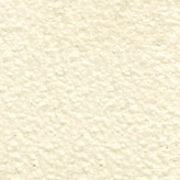 White (Warmgrey 1U)