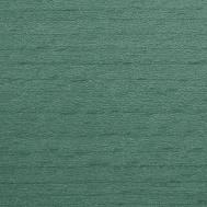 Buche gebeizt_ TP 269 Grey green