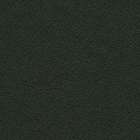 Leather_ Cat. E2_ F964881 testa di moro
