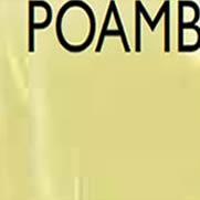 POAMB amber satin polycarbonate