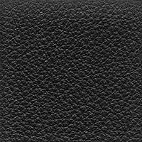 Leather Florida_  2002
