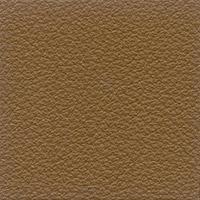 Leather Florida_  2066