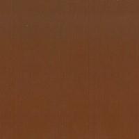 Piel Vintage_ Cinnamon