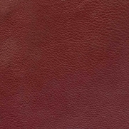 Leather Koto: bordeaux