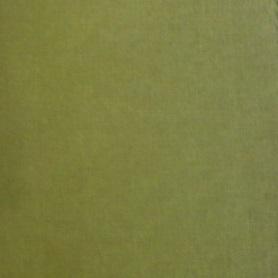 Cat B_ Loira_ Verde 250