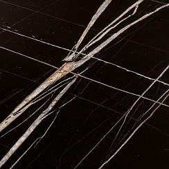 Sahara noir marble