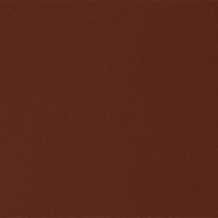 Hide Leather_ russian red 5008