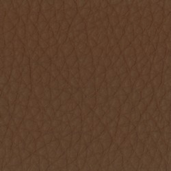 California Leather Cognac CA5003