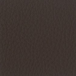 California Leather Nut Brown CA5017