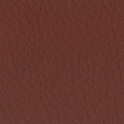 California Leather Red CA5009