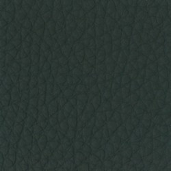 California Leather Green CA5006