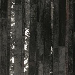 Hoover_ Noir et Argent