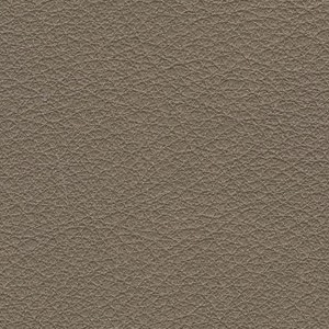 Leather Kasia_ 257