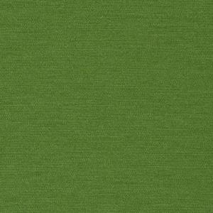 Uniform_ grass