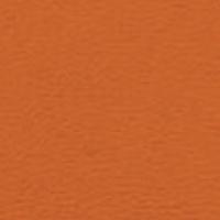 Stamskin Orange