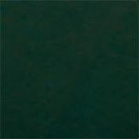 44 _ Green Black