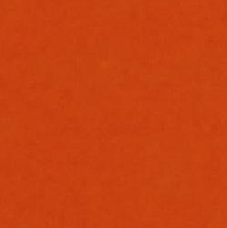 40 _ Orange