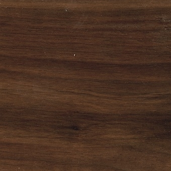 Oil treated Walnut