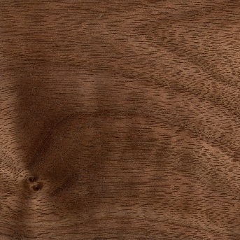 Lacquered Walnut