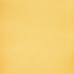 Loop Yellow