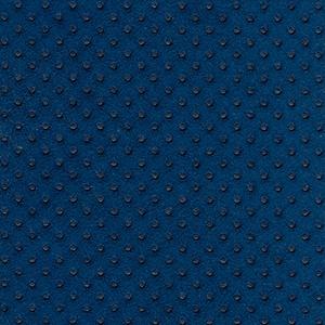 Sponge azul