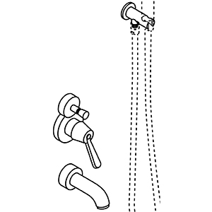 Single lever, with water mains connection and handheld shower support