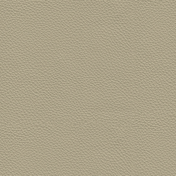 Ecoleather_ ECP04 Beige