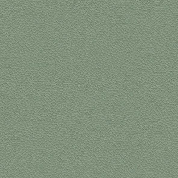 Leather_ 990 Salvia