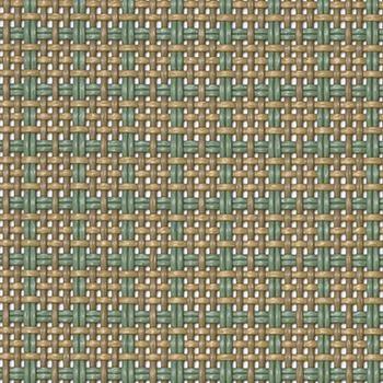 Parallel_Kelp 556