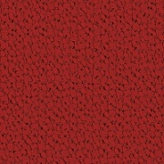 Credo_ 16 red chilli