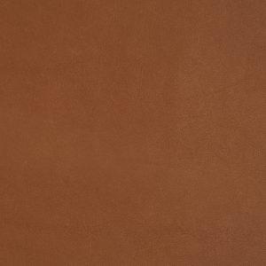 Leather_ Cat. E2 Fohn_ F964306 Ambra