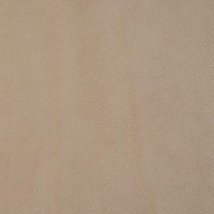 Leather_ Cat. E2 Fohn_ F964303 Tufo