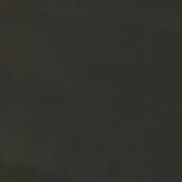 Cuoio_ grigio scuro