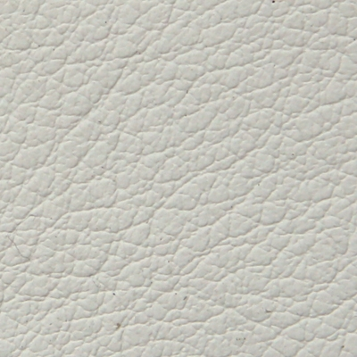 leather Frau SC 21 asbestos