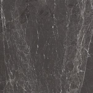Glossy Grigio Stardust Marble