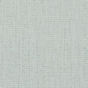 C5 - gris claro