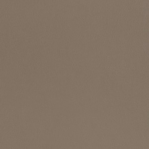 Leather Pandora_ PD524