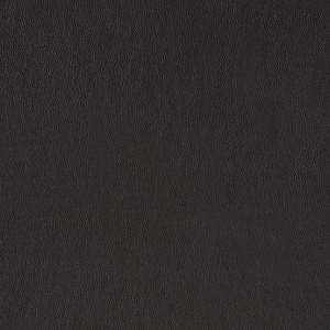 Leather Pandora_ PD534