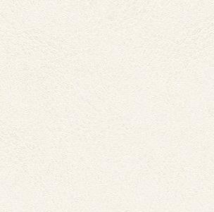 Micropore _ 01 Champagne white