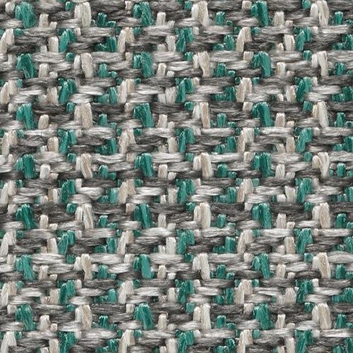 Cat. C_Cactus A83